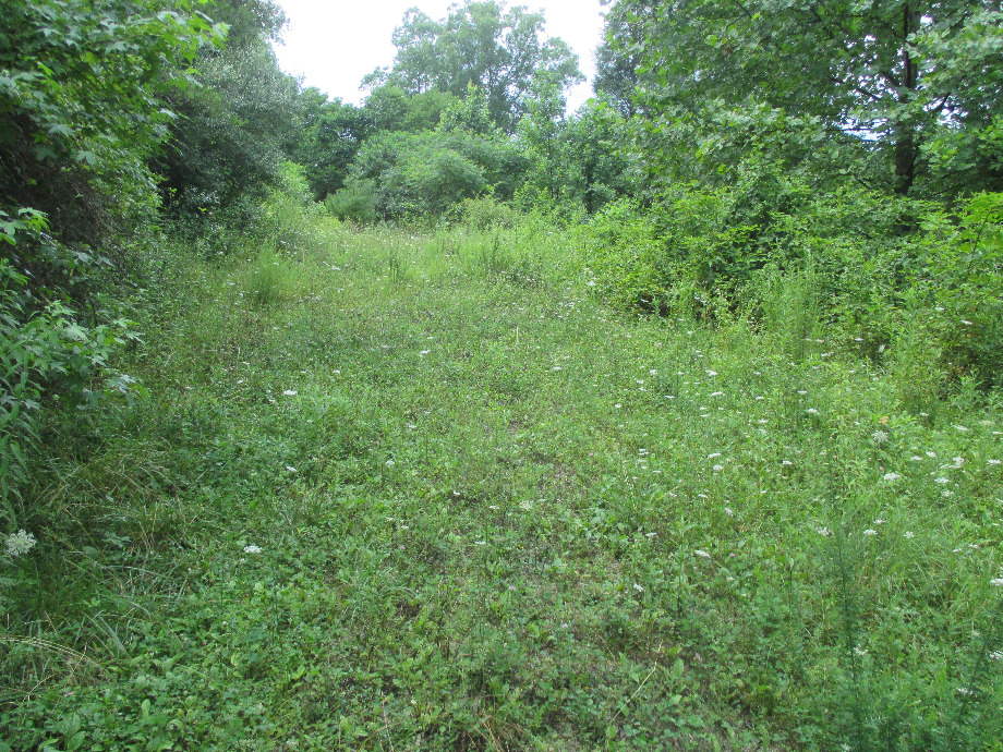 Sanders Creek | 3.91 acres more or less with a septic system